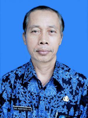 Eko Budiyanto Fx.